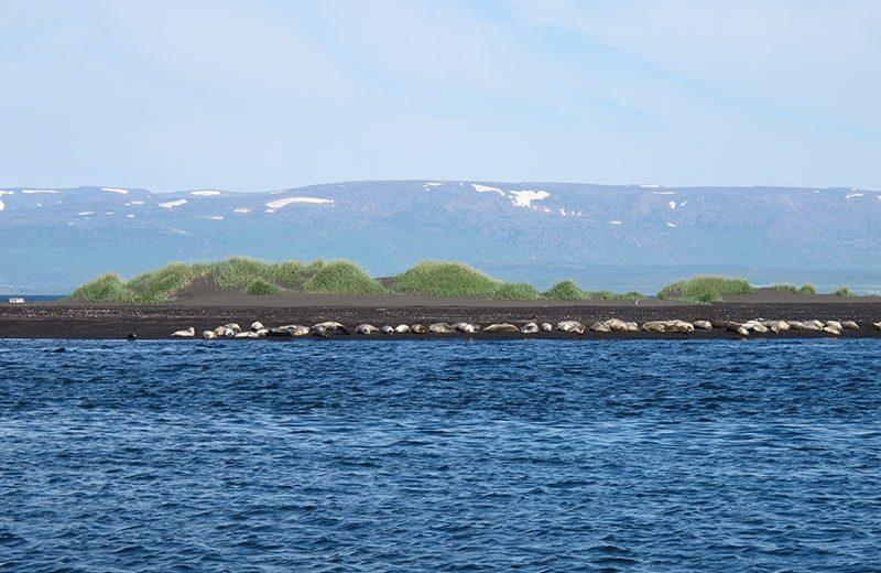 out-away-ijsland-04